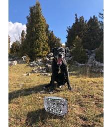 LLUKU DRINKER FOUR CHIENS ET CHATS BLACK DOG