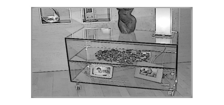 Cubos Cristal y Vitrinas en Cristal